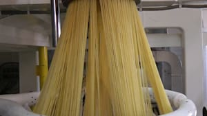 Martelli uses a unique and mesmerizing process to make its dried spaghetti