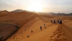 Sie wollten Giraffen beobachten: 6 Touristen und 2 Begleiter in Niger getötet