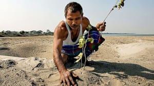Aus Wüste wird Wald: Er pflanzt seit über 40 Jahren jeden Tag einen Baum
