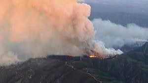 Buschbrand in Kalifornien - Hunderte Feuerwehrleute im Einsatz