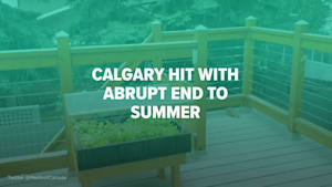 Calgary Gets First Taste Of Winter With September Snowfall