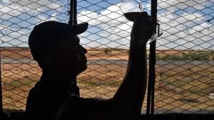 Bittere Trauben: Algeriens Winzer wegen Dürre und Corona in Not