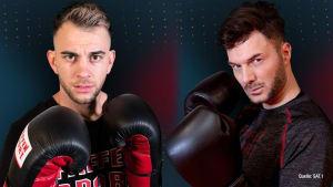 """SAT.1 Promiboxen"": Serkan Yavuz macht Sam Dylan DIESE Ansage"