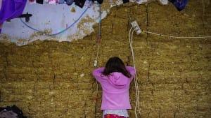 Albanien will Lage der Roma verbessern