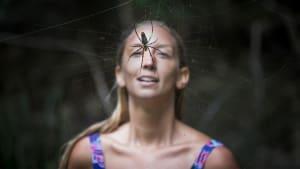 Veganerin wird von Spinne gebissen: Die Folgen sind heftig