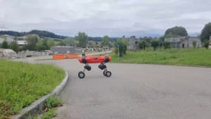Roboter: Von vier Beinen zu vier Rädern