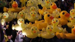 Gelbe Gummi-Enten: Symbol der Proteste für mehr Demokratie inThailand