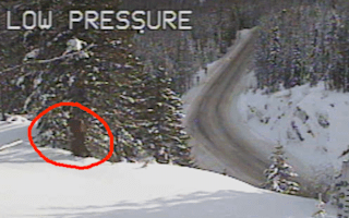 Bigfoot spotted on traffic camera?