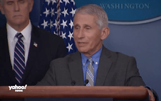 Fauci dismisses 'conspiracy theories' to spin the coronavirus death toll