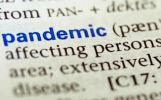Pandemic picked as word of the year