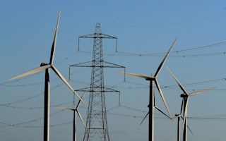 Energy suppliers split over asking Government for a bailout