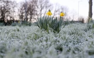Chilly weekend continues as mercury dips below zero