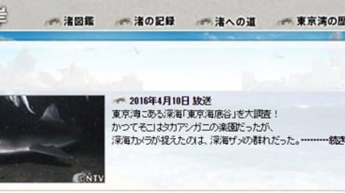 【今度はサメ】TOKIOが専門家も大興奮の「奇跡のサメ」を発見しネット騒然 「TOKIOなら日常」