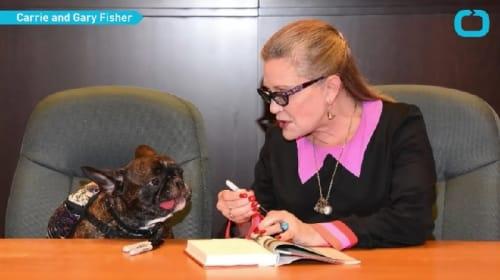 キャリー・フィッシャーの愛犬ギャリーは、飼い主亡き後どうなる?