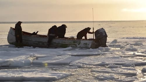北極海で動物たちを脅かすほどの謎の海鳴りが・・・