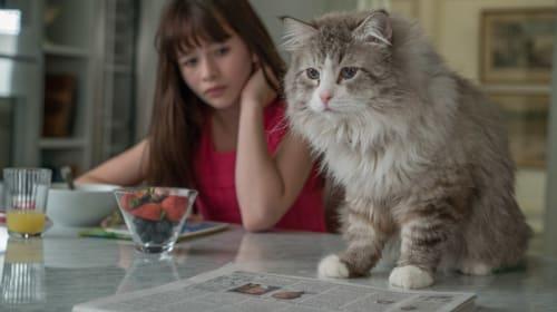 【募集終了】猫好きにはたまらニャい!!!『メン・イン・キャット』オリジナルぷっくり肉球マグネット、3名様にプレゼント