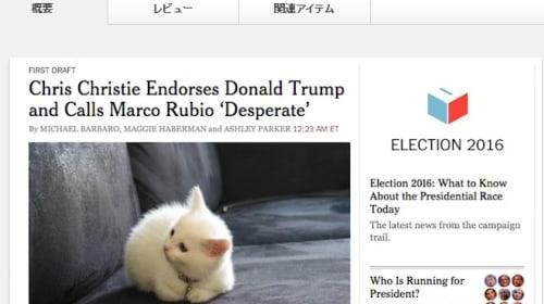 毎日目にするトランプ氏の画像の代わりにネコの画像を表示するブラウザの拡張機能が話題に
