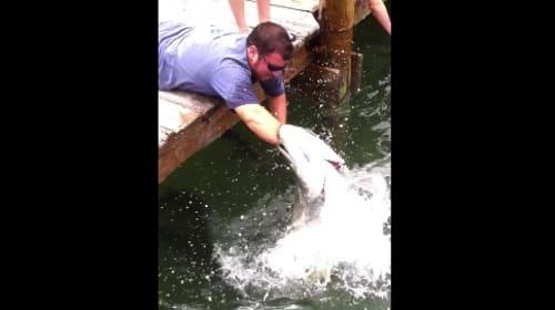 見てるだけで痛いよー!右腕一本で巨大魚を釣り上げる男がスゴすぎる【動画】