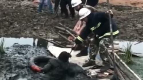 飲みすぎ注意!酔っ払いの男性が泥道にはまって身動きとれない大惨事に【動画】