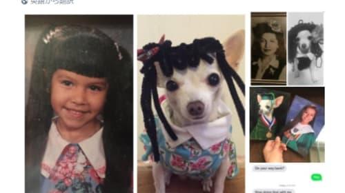 愛犬家の女性による家族の写真へのいたずらが手が込み過ぎww
