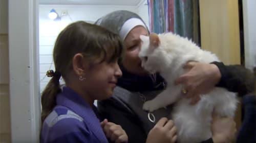 イラク難民の迷子のニャンコが飼い主のもとへ生還!「奇跡すぎる」と世界中から驚きと感動の声【動画】