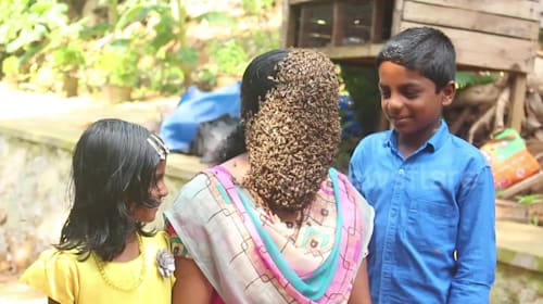 Woman allows hundreds of bees to swarm her face
