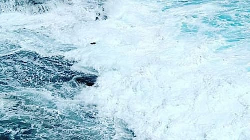 Terrifying moment tourists are swept out to sea in Honolulu