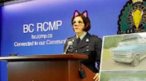 Cat filter blunder adds bizarre twist to double murder press conference