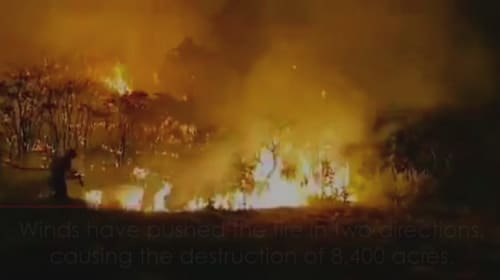 Thousands flee 'monster' wildfire on Gran Canaria
