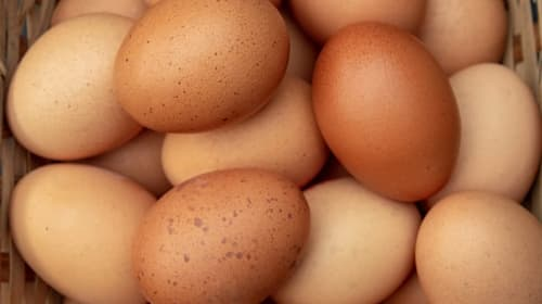 Ten-second trick tells you whether your eggs are past their use-by date