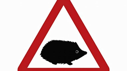 New hedgehog road sign launched to help protect small mammals