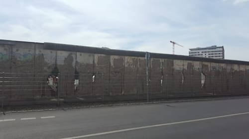 Scientist speaks out over remedy containing 'spiritual force' of Berlin Wall