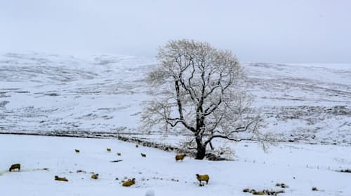 In Pictures: Winter snap brings snow and ice to parts of UK
