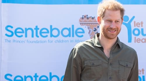 We need his passion not his title – charity chief backs Harry's decision