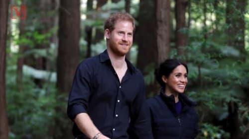 ヘンリー王子が、英国王室の人気調査でトップに
