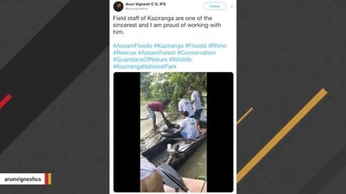 インド・アッサム州の洪水で溺れた子サイが無事救出【映像】