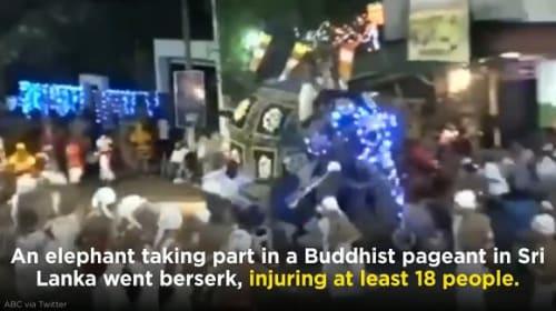 スリランカのお祭りで象が突如暴走!18人が怪我を負う【映像】