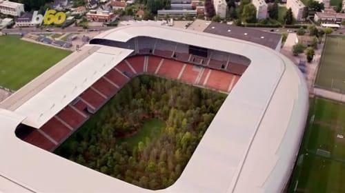 芸術家がサッカースタジアムのフィールドを木で埋め尽くす!?