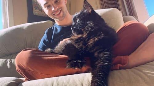5年前から行方不明になっていた愛猫が、2000km以上離れた場所で発見!