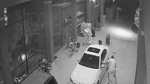 現役NFL選手が駐車場でクマと遭遇!【映像】