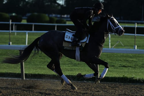 Belmont Stakes 2019: Betting odds and post positions
