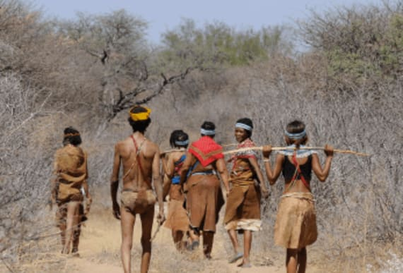 Revolutionary study reveals all of human race descended from Botswanan woman 200,000 years