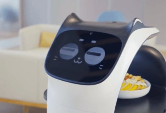 This cat robot could be the server we didn't know we needed
