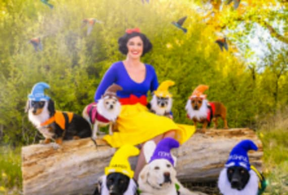 Woman creates the most epic group costume for herself along with her 7 dogs