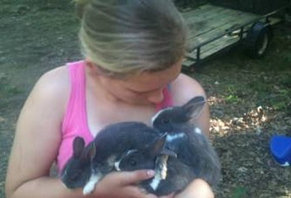 Vegan who attempted to rescue rabbits from farm causes 100 bunnies to be slaughtered