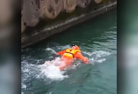 Ferry Crewman Spots A Strange Creature Clinging To The Bottom Of The Boat And Leaps Into
