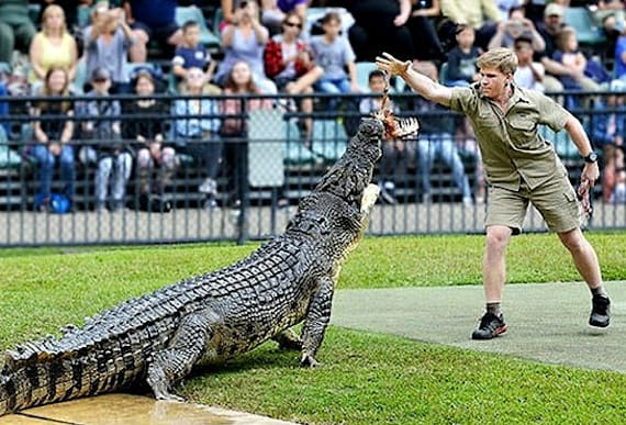 Newly Released Photos Of Steve Irwin's Son Expose One Bewildering Detail About The Family