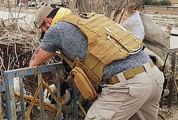Soldier Finds A Creature In The Rubble That Gives Him A Whole New Mission
