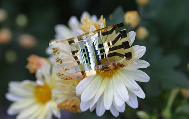 Flexible solar cell from Monash