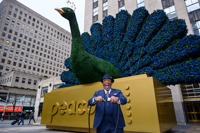 TODAY -- Pictured: Al Roker, NBCUniversal kicks off it's new Peacock streaming service on TODAY at 30 Rockefeller Plaza -- (Photo by: Nathan Congleton/NBC/NBCU Photo Bank via Getty Images)